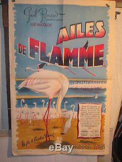Affiche Cinema Ricard Camargue Flamands Roses
